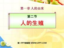 《人的生殖》人的由来PPT课件2