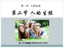 《人的生殖》人的由来PPT课件4