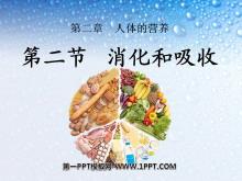 《消化和吸收》人体的营养PPT课件4