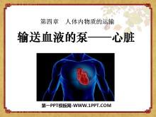 《输送血液的泵-心脏》人体内物质的运输PPT课件