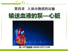 《输送血液的泵-心脏》人体内物质的运输PPT课件3