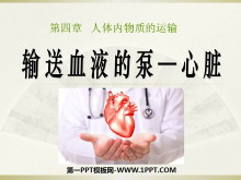 《输送血液的泵-心脏》人体内物质的运输PPT课件5