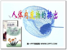 《人体内废物的排出》PPT课件3