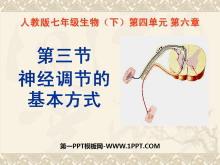 《神经调节的基本方式》人体生命活动的调节PPT课件