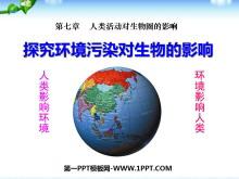 《探究�h境污染�ι�物的影�》人�活��ι�物圈的影�PPT�n件3
