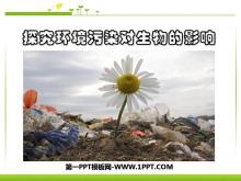 《探究�h境污染�ι�物的影�》人�活��ι�物圈的影�PPT�n件4