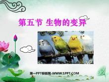 《生物的变异》生物的遗传和变异PPT课件4