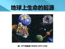 《地球上生命的起源》生物的进化PPT课件5