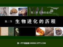 《生物进化的历程》生物的进化PPT课件