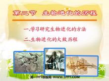 《生物进化的历程》生物的进化PPT课件2