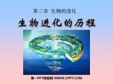 《生物进化的历程》生物的进化PPT课件3