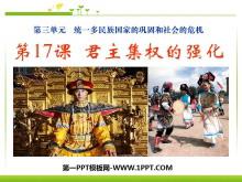 《君主集权的强化》统一多民族国家的巩固和社会的危机PPT课件3