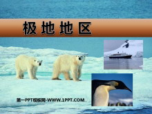 《极地地区》PPT课件