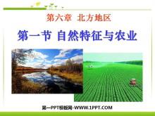 《自然特征与农业》北方地区PPT课件4