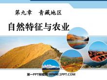 《自然特征与农业》青藏地区PPT课件