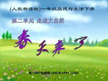 《春天来了》走进大自然PPT课件2