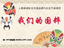 《我们的国粹》独具魅力的中华文化PPT课件2