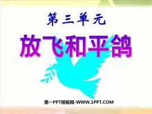 《放飞和平鸽》同在一片蓝天下PPT课件2
