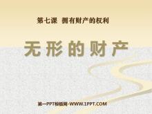 《无形的财产》拥有财产的权利PPT课件5