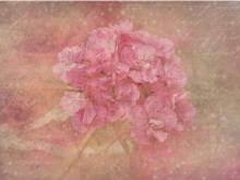 唯美粉色花卉艺术PPT背景图片