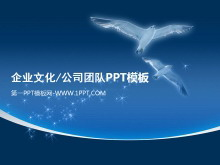 企�I文化公司�F�PPT模板