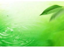 绿叶水珠波浪PPT背景图片