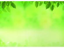 水珠树叶黄绿色调PPT背景图片