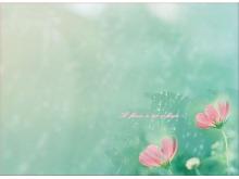 透明水珠小花翠绿唯美PPT背景图片