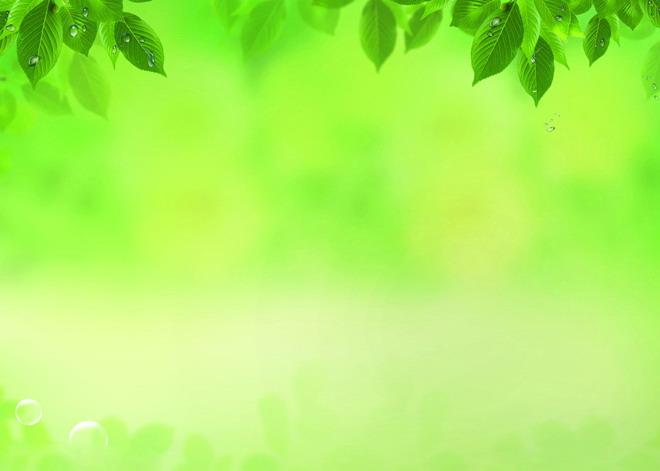 水珠葉子黃綠色調ppt背景圖片