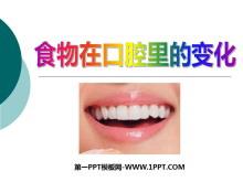 《食物在口腔里的变化》我们的身体PPT课件3