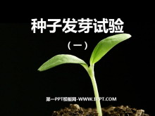 《种子发芽实验(一)》生物与环境PPT课件2