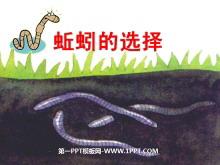 《蚯蚓的选择》生物与环境PPT课件
