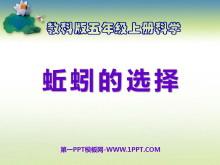 《蚯蚓的选择》生物与环境PPT课件5