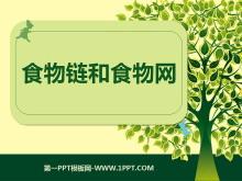 《食物链和食物网》生物与环境PPT课件