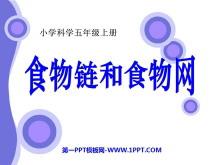 《食物链和食物网》生物与环境PPT课件4
