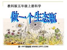 《做一个生态瓶》生物与环境PPT课件4