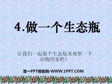 《做一个生态瓶》生物与环境PPT课件5