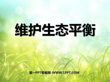 《维护生态平衡》生物与环境PPT课件3
