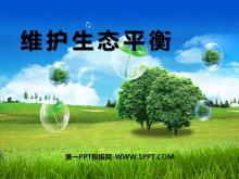 《维护生态平衡》生物与环境PPT课件