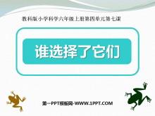 《�l�x�窳怂���》生物的多�有�PPT�n件