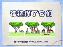 《谁选择了它们》生物的多样性PPT课件4