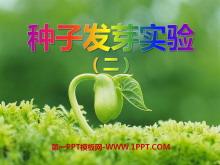 《种子发芽实验(二)》生物与环境PPT课件2