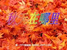 《秋天在哪里》金色的秋天PPT课件3