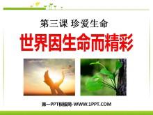 《世界因生命而精彩》珍爱生命PPT课件2