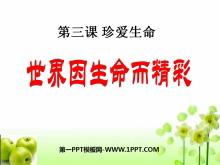 《世界因生命而精彩》珍爱生命PPT课件3