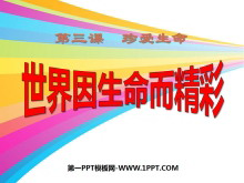 《世界因生命而精彩》珍爱生命PPT课件5
