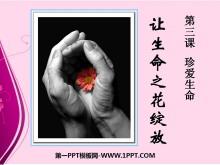 《�生命之花�`放》珍�凵�命PPT�n件