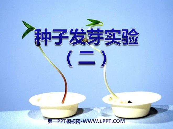 《种子发芽实验(二)》生物与环境PPT课件