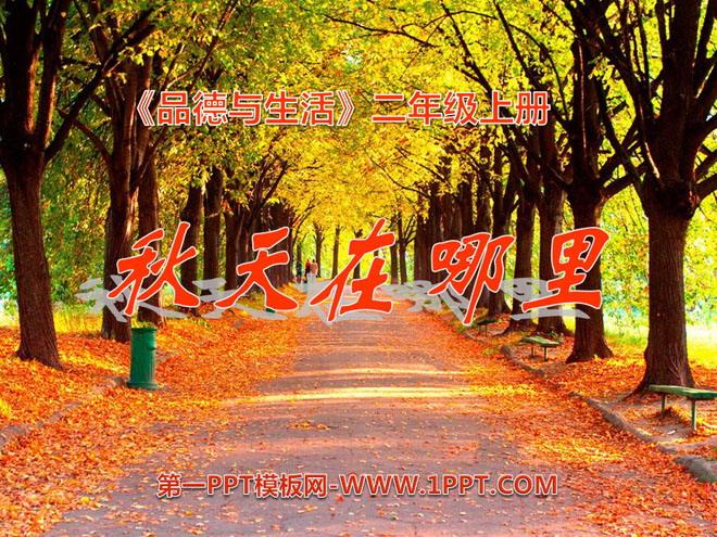 《秋天在哪里》金色的秋天ppt课件2