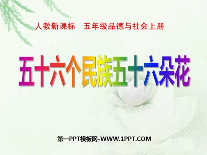 《五十六个教学五十六朵花》我们都是中华儿女民族快手封面图片